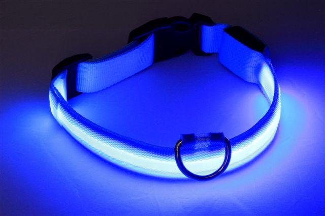 Neon Light Dog Collars